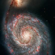 Von SOFIA beobachtete Magnetfeldlinien, die über ein Foto der Whirlpool-Galaxie M51 des Hubble-Weltraumteleskops der NASA gelegt sind. Die Infrarotaufnahme von SOFIA zeigt, dass die Magnetfelder in den äußeren Armen nicht der Spiralform der Galaxie folgen, sondern stattdessen verzerrt sind. Die intensive Sternentstehungsaktivität in den äußeren Armen (in rot dargestellt), könnte dieses magnetische Chaos zusammen mit den Kräften der Begleitergalaxie NGC 5195 verursachen, die an einem der Spiralarme zerrt.