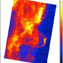 SOFIA veröffentlicht neue Karte vom Pferdekopfnebel im Orion